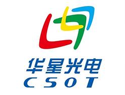 武汉华星光电半导体显示技术有限公司